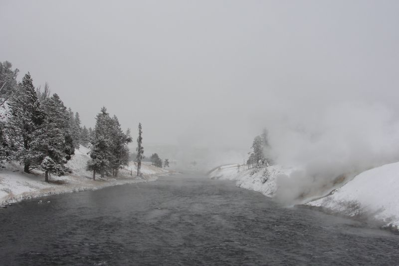 Firehole River: termal river due to termal water flowing into it