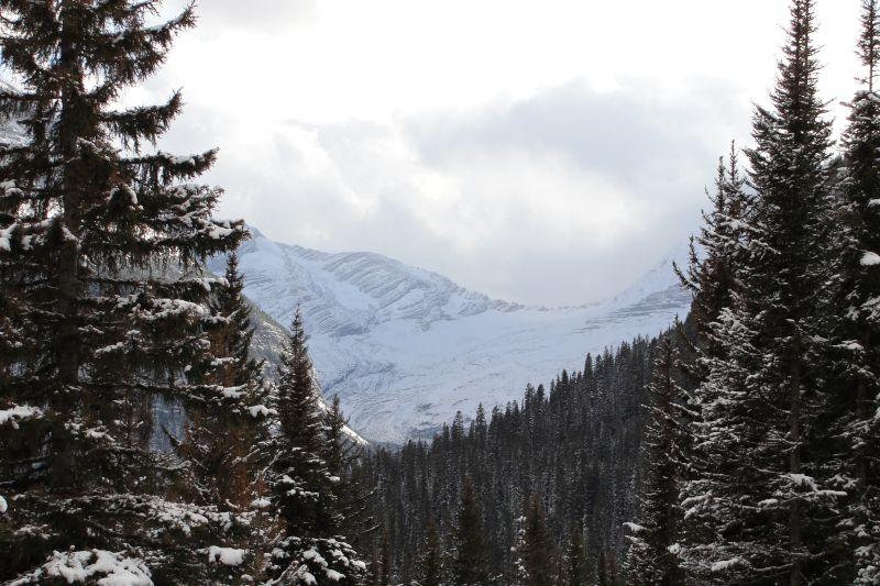 Glacier in the Rockies