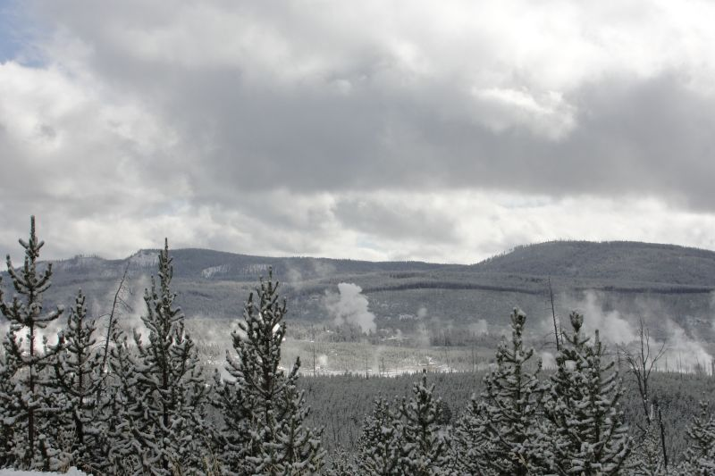 Typical Yellowstone Scenery